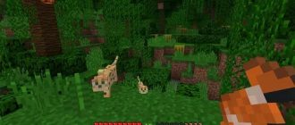 Minecraft v 1.16.2